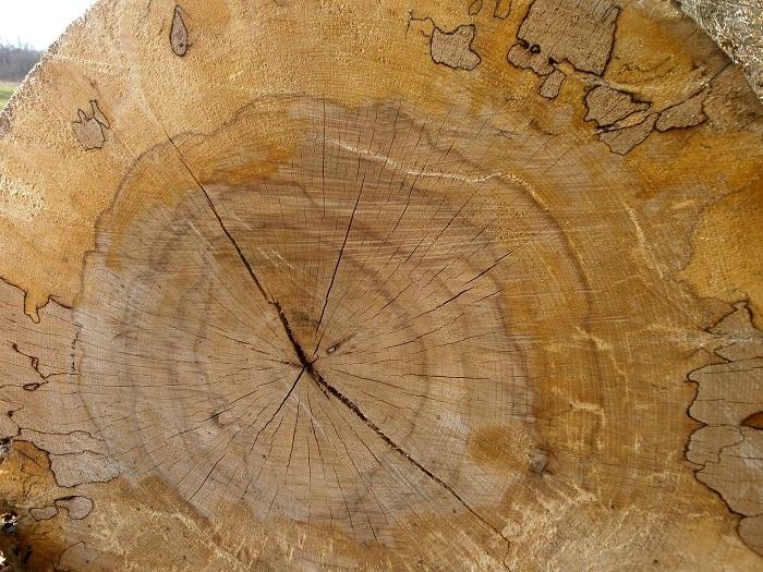 Olej na drevo a povrchy