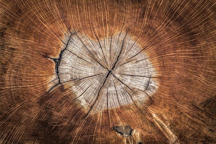 Kotly na drevo sú veľmi obľúbené